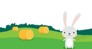 Level 113 - A rabbit can pick two carrots per minute. How many carrots can it pick from this field in ten minutes?
