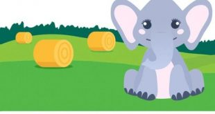 Level 128 - An elephant can eat 3 bales of hay every 8 minutes. How much can he eat in 1 hour in this field?