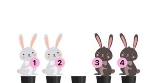 Level 133 - Swap the white and black rabbits