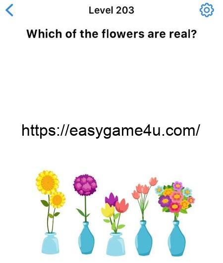 Level 203 - Which of the flowers are real?